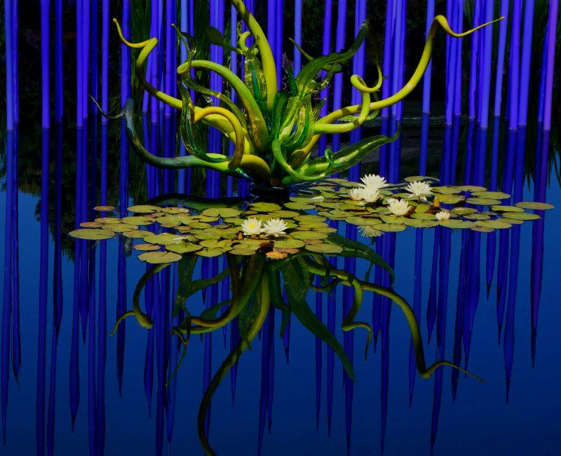 Glass Reflections in Blue by Susan Haffke, f11 Color Digital, Score: 9
