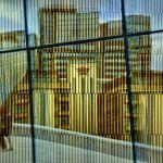 Reflected Skyline by Oz Pfenninger, f16 Color Digital, Score: 10