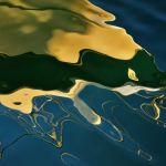 Sea Monster by Oz Pfenninger, f16 Color Digital, Score: 9