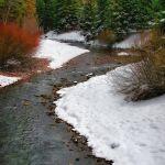 Winter Wonderland by Dick York, f16 Digital, Score: 9