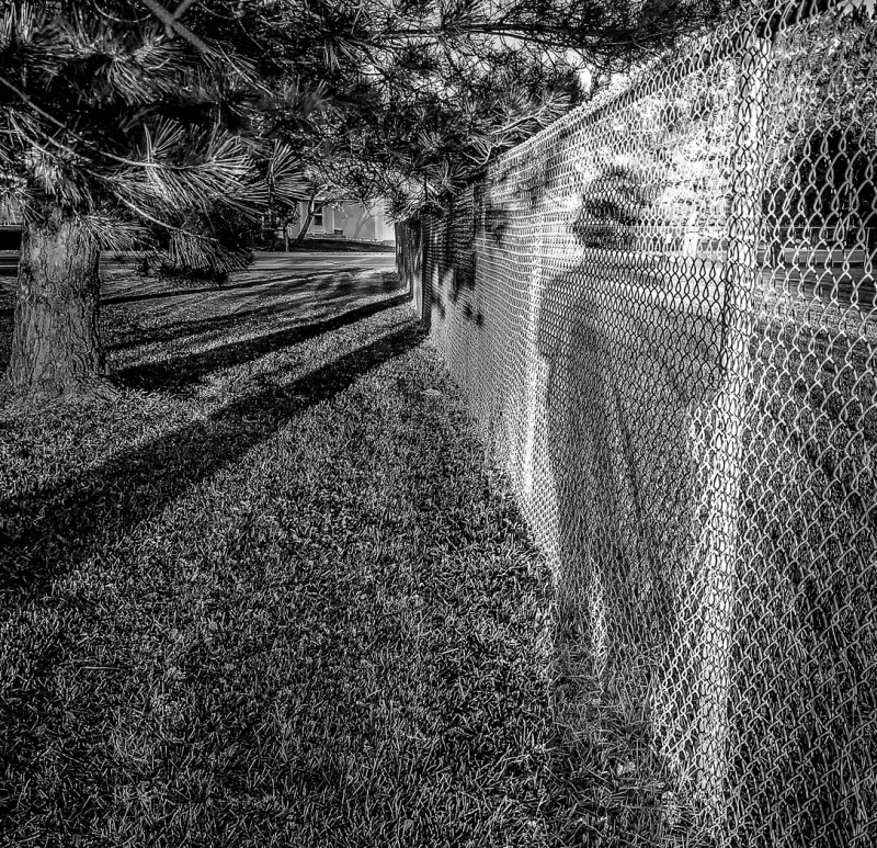 Shadow Shadow by Steve Wilton, f8 B&W Digital, Score: 10