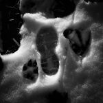 Witness Marks by Dominic Adducci, f5.6 B&W Digital, Score: 10