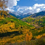 Aspen near Aspen by Joyce Mickelson, 1st f8 Color