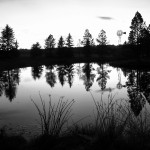 Reflections by Paul Olthoff, 2nd f8 Monochrome