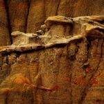 Erosion Pattern by Oz Pfenninger, f11 Digital, Score - 10