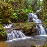 Waterfall in Paradise by Dan Greenberg, f16 Digital, Score: 10