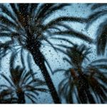 California Rain by Kristen Mary Smith, f11 Digital, Score: 10