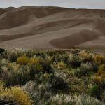 Dunes by Katherine Bors, f8 Digital, Score: 9