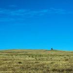 one tree hill by Travis Broxton, f16 Digital, Score: 9