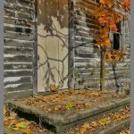 By the Side of the Road by Gwen Paton, f11 Color Digital, Score: 9