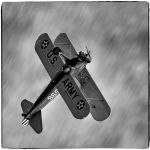 Acrobat! by Todd Lytle, f16 B&W Digital, Score: 10