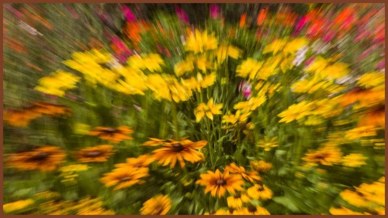 Explosive Garden Bouquet by Nancy Myer, f16 Color Digital, Score: 9