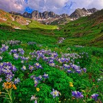 Summer at American Basin by Marv Mickelson, 1st f16 Color