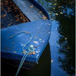 Blue Bondage by Gary Witt, f16 Digital, Score: 9
