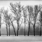 Foggy Front by Gary Witt, f16 Monochrome, Score: 9