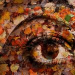 Eye of Autumn by Joe Bonita, f16 Digital, Score: 10