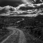 The Road by Clifford Stockdill, f5.6 Digital, Score: 9