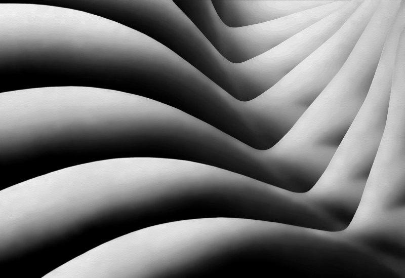 Bodywaves by Joe Bonita, f16 B&W Digital, Score: 10