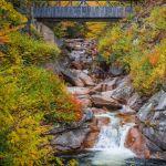 Fall Fantasy by Ronald Schaller, f16 Color Digital, Score: 10