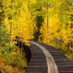 Water Flume in Autumn by Dave Hull, f11 Color Digital, Score: 9