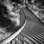 Reaching Into the Sky by Oz Pfenninger, 1st f11 Monochrome