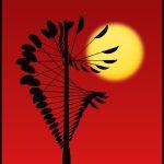 Magical Mobile & Sun by Joe Bonita, f16 Color, Score: 10