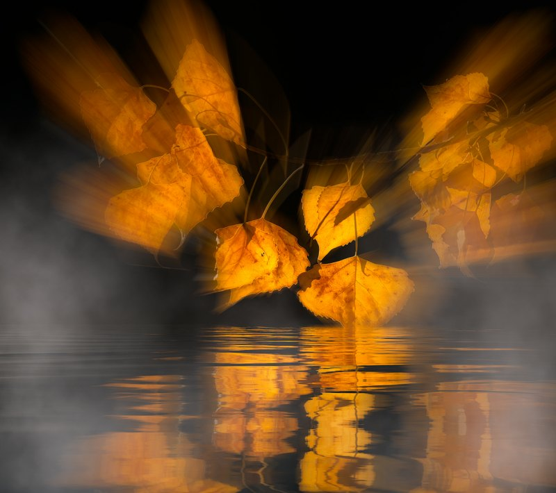 Fall Reflections by Leander Urmy, f16 Color Digital, Score: 10