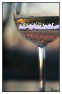 Liquid Tuscany by Peggy Dietz